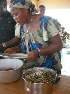 Training - Benin